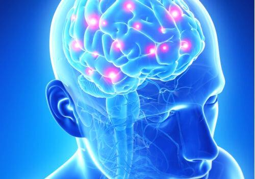 Psiconeuroinmunología: Lo que el corazón quiere, la mente se lo muestra